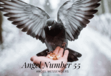 Angel Number 55 meaning and signs